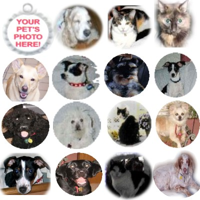 Fancy Pants Fashion Bottle Cap (White) Pet ID Tag - Customized with YOUR PET'S PHOTO!