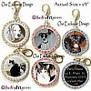 Fancy Pants Fashion Jewelry Custom Rhinestone Photo Pendant ID Tag WITH YOUR PET'S PHOTO!